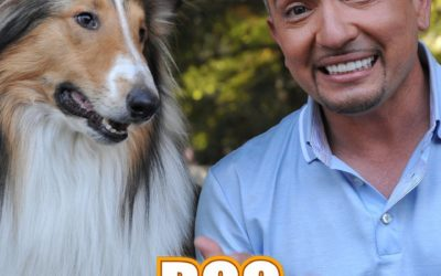 Belajar Dari Dog Whisperer (PDF Download)