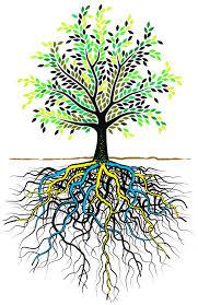 Holistic Healing – Penyembuhan Menyeluruh